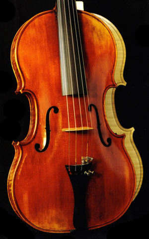 photo of 5-string viola